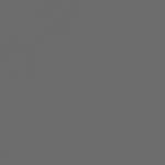 DLW delifol NG Granit š.2m