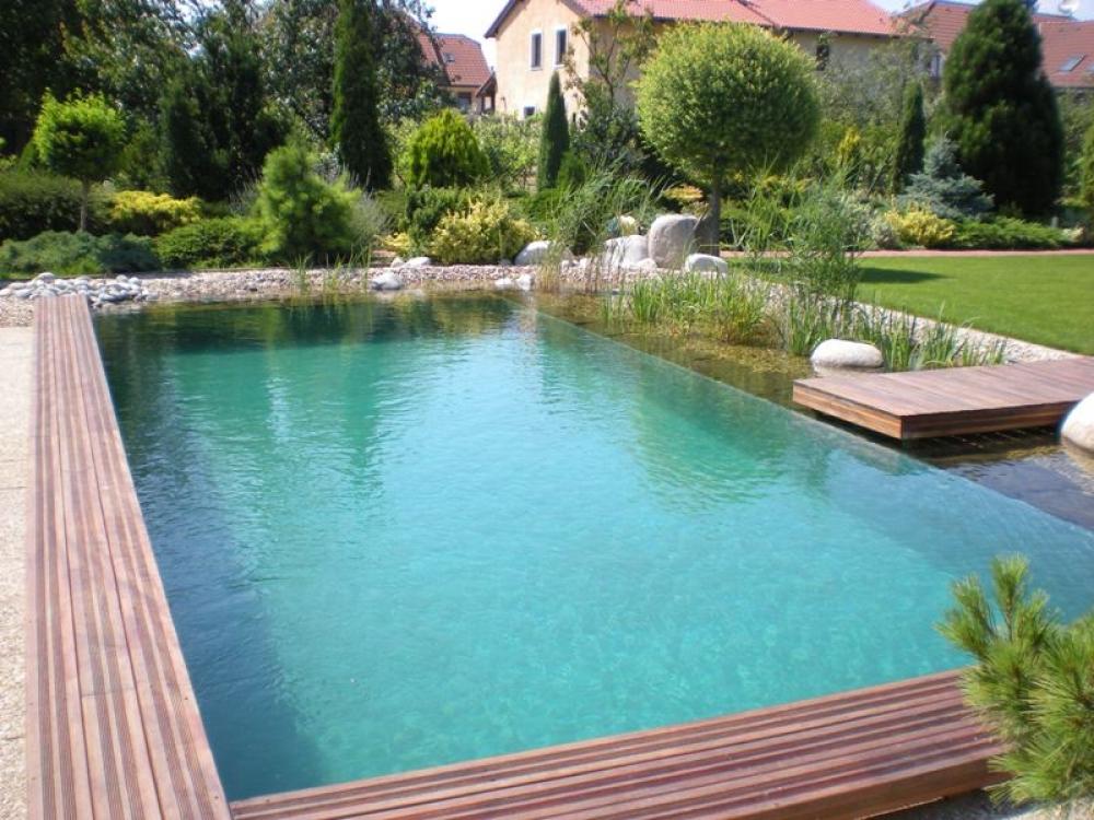 Bio schwimmbad und schwimmteich for Schwimmteich