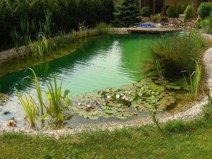 Záhradné jazierka, bazény