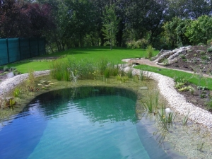 jazierka, záhradné jazierka