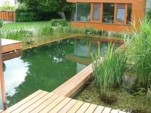 Kúpacie jazierka, záhradné jazierka