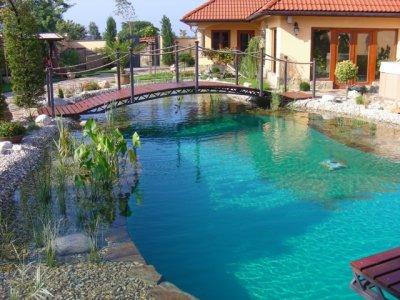 úszótó, kertitó