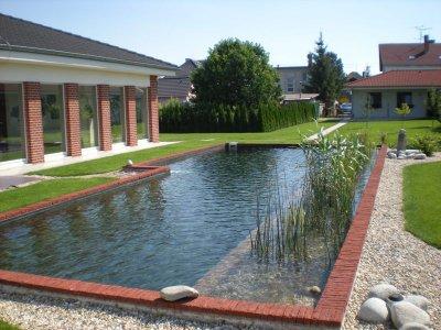 Fürdőtó, kerti tó, úszótó
